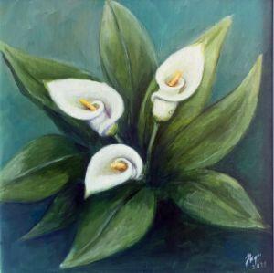 Three calla lilies