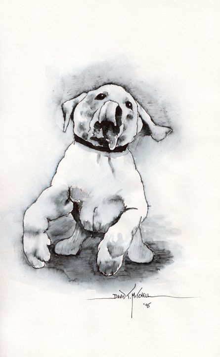 """""""Playful Pup"""" -sketch - Artwork by David T. Mitchell"""
