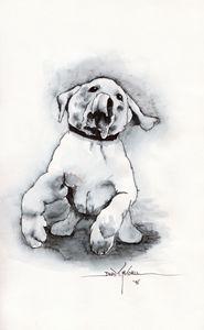 """Playful Pup"" -sketch"