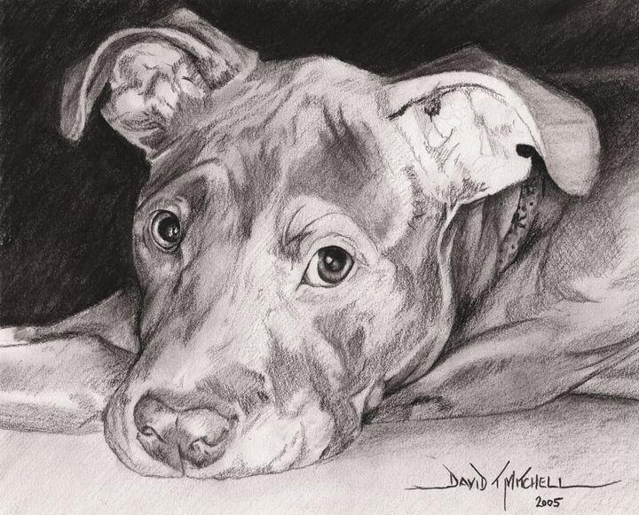 """Trusting Eyes"" - Artwork by David T. Mitchell"