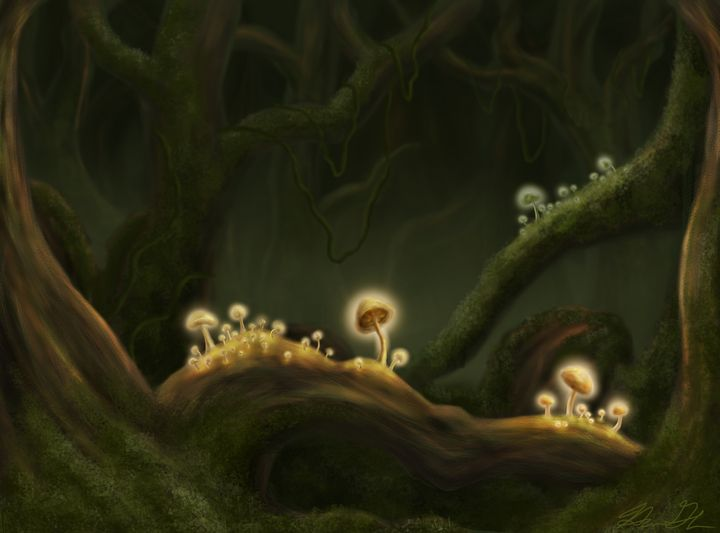 Foggy Luminescence - HannahG