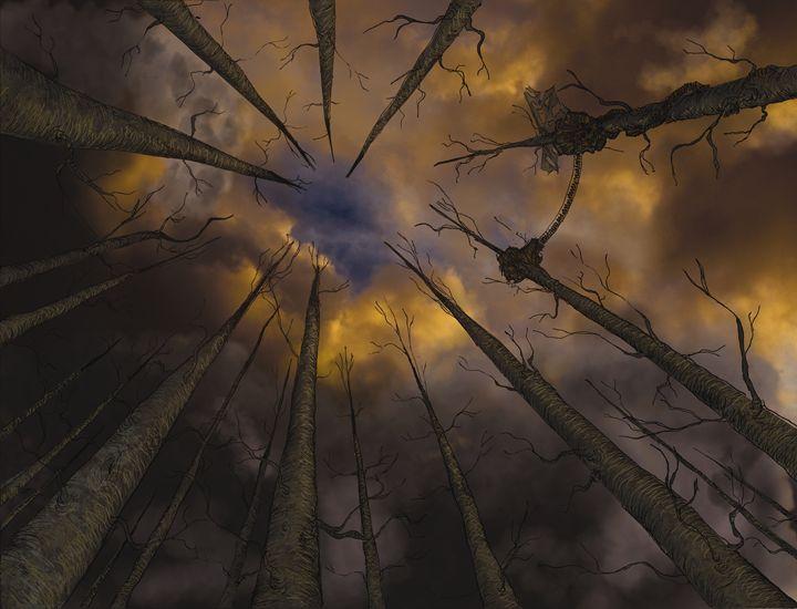 Woodland Skyward - Tim Douel Art