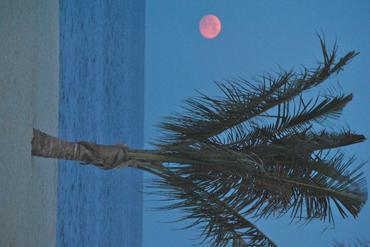 Red Moon - Kelly Anne Photography