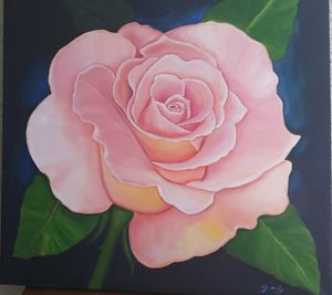 Pink Rose 34x34