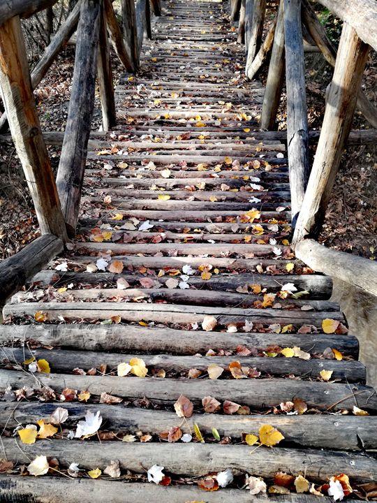 Wooden path - Ema's Art