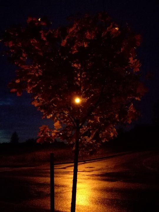 Autumn tree - Ema's Art
