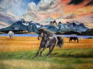 Beautiful sunset and beautiful horse