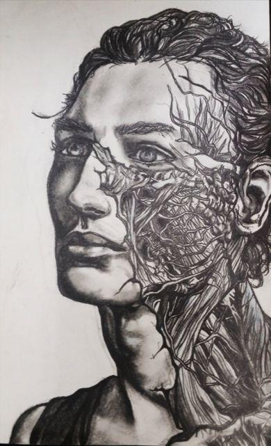 Anatomical Constitution - Anastasia Ragnhildstveit