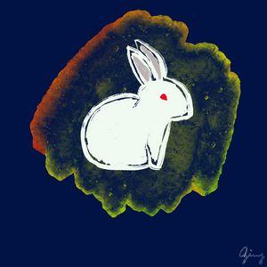 Nightly Rabbit