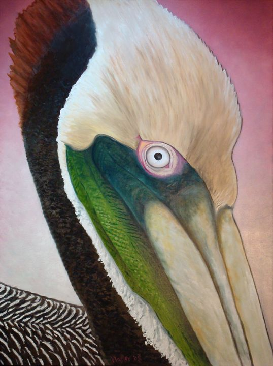 Pelican Peeking - Whimsical Artist Scott Plaster