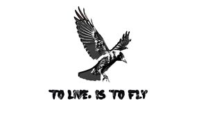 To live, is to fly