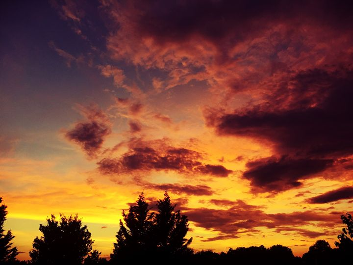 Fire in the Sky - Melissa Howell