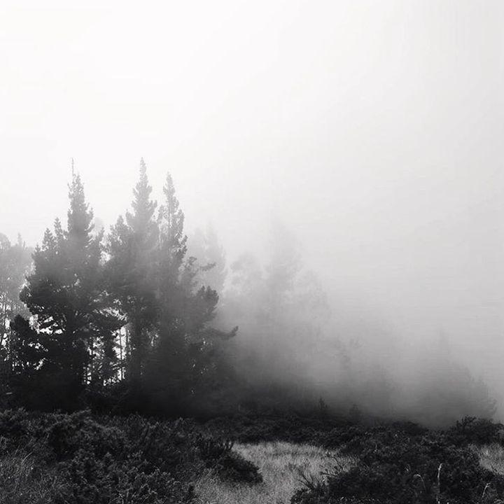 Into the Smoke - Tory Aira Photo