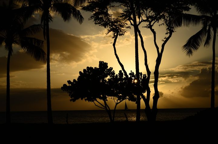 Sunset in Hawaii - Tory Aira Photo