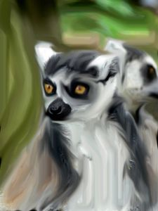 the Lemur