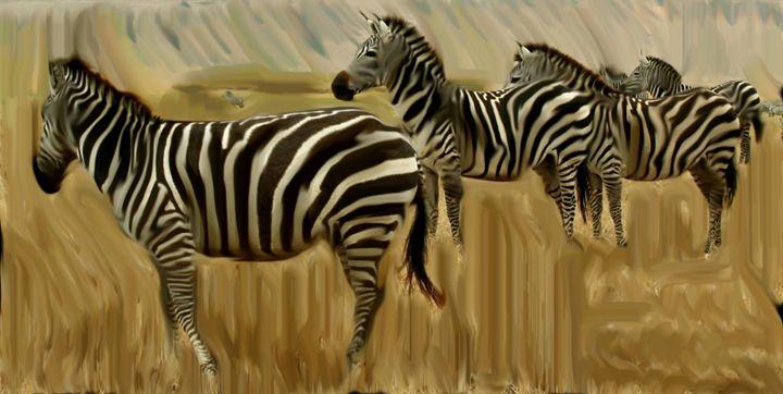 Zebras - The Sweet Silence