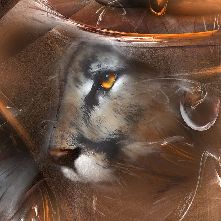"""Cougar """"Mountain Lion"""" Animal - Jackie Flaten"""