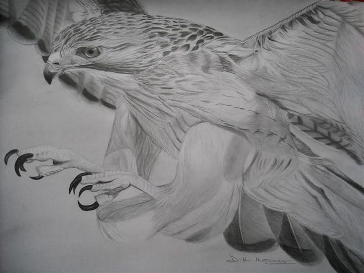 big bird - pencil art