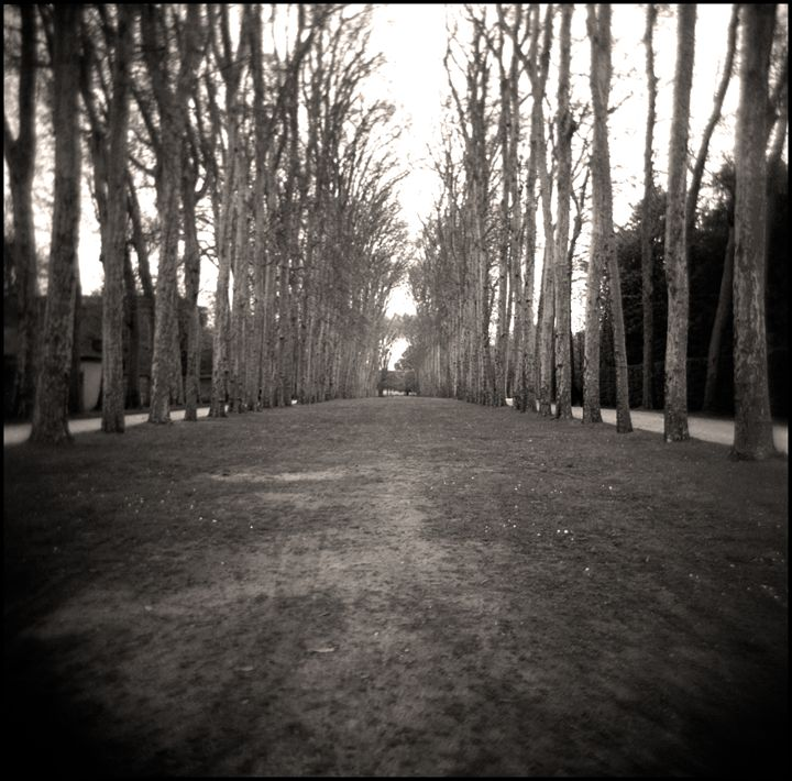 Versailles - Norberto Lauria