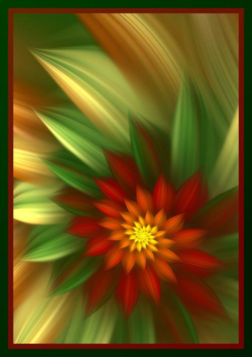 Christmas Flower - Starseed