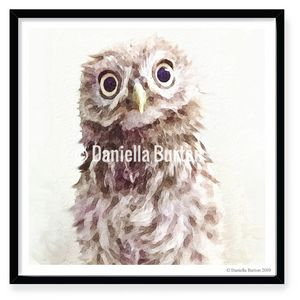 Curious Little Owl Print Unmounted