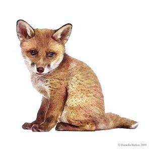 Fox Cub Watercolour