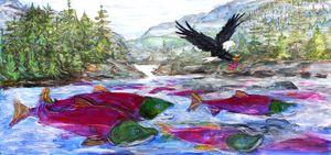 Sto:lo Salmon River Run