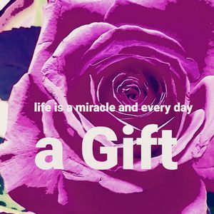 Life is a miracle & every day a Gift