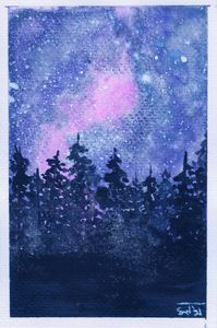 Nighttime Forest