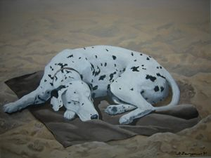 SUN DOG - Georgena Bourgeault