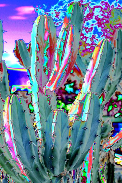 Blue Flame Cactus Abstract - M Diane Bonaparte