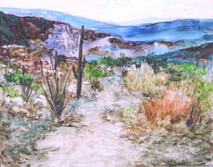 Desert Trail 2 - M Diane Bonaparte