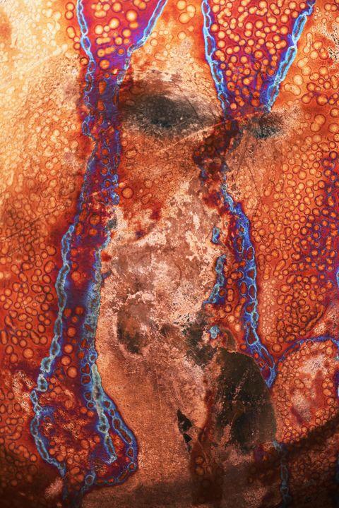 Behind The Curtain - M Diane Bonaparte