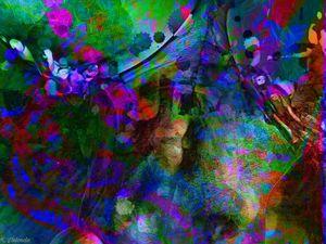 Dream Nebula