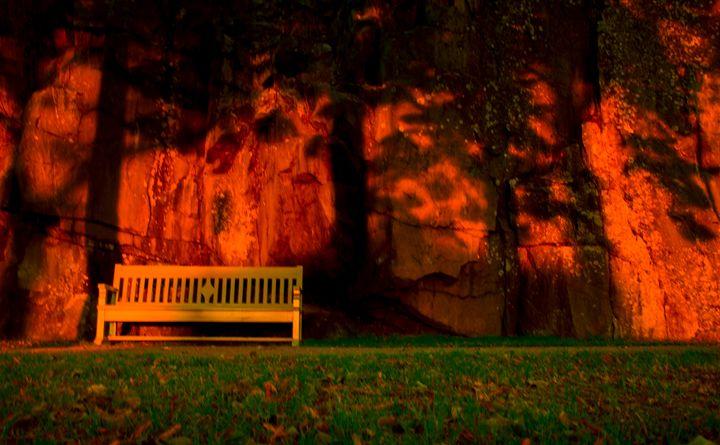 Autumn Sun - Mark Priory Photography