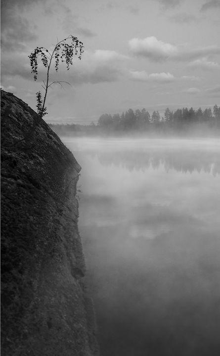 Misty Lake - Mark Priory Photography