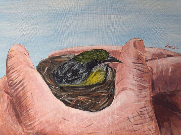 Wise hands - Lavinia Art Studio
