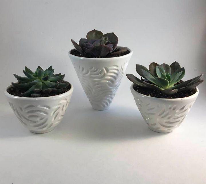 White Earthenware succulent pots - Tama Roberts Art