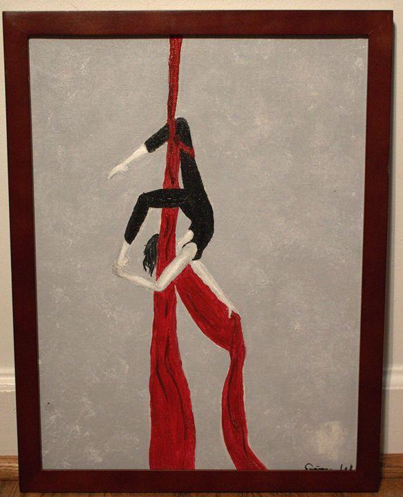 aerialist silks - Quinn.W