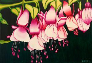 Pink Fuschias