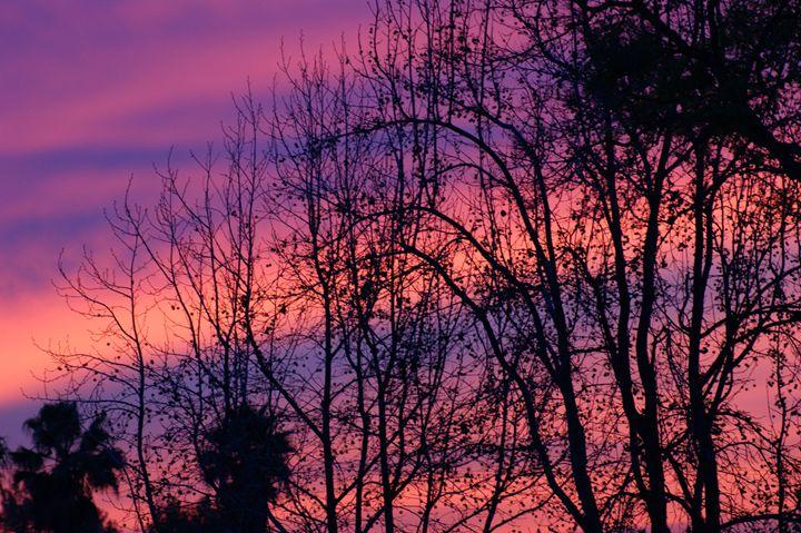 Sunrise - Shannon