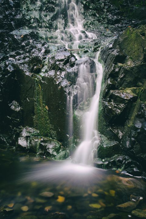 Hemlock Falls - Heatherae Photography
