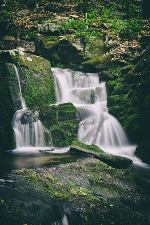 Spring Falls - Heatherae Photography