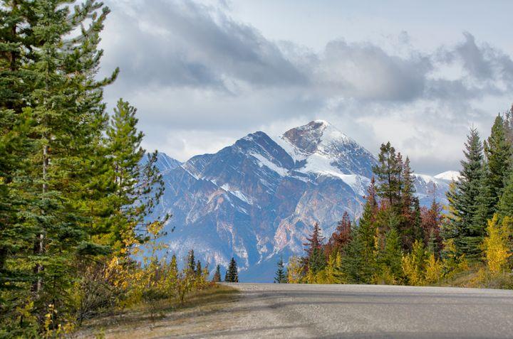 On the Road - Heatherae Photography