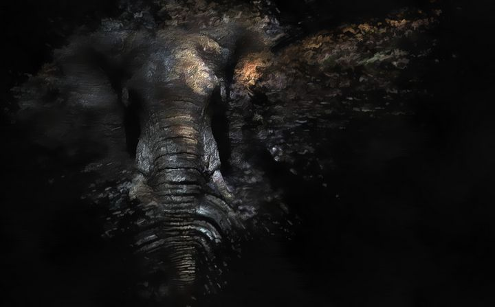 Of African elephant - Aramand Corinth