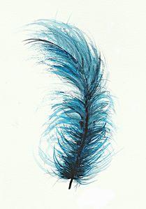Feather َArt Work