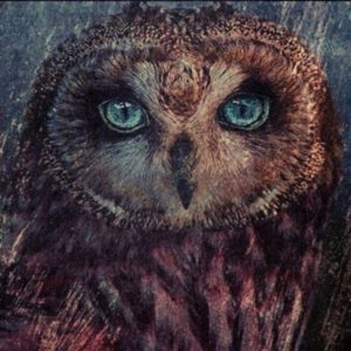 The Owl - Beautiful Stunning Art by Goodeyez