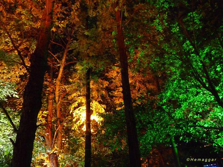 Kuming at Night - Hemu Aggarwal's Gallery