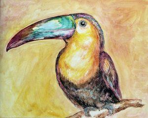 Toucan 5