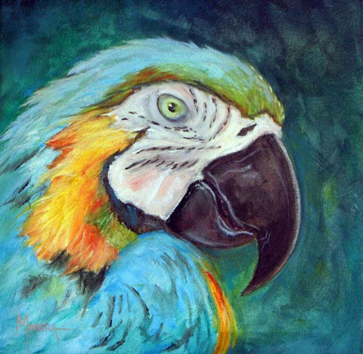 Macaw - jmodernart